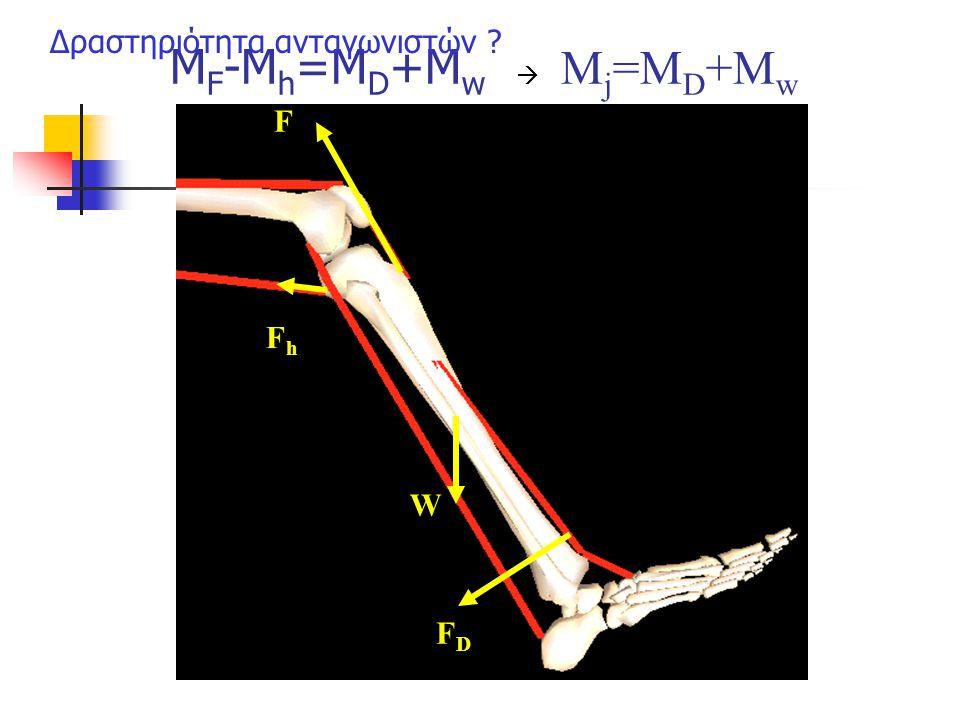 M F -M h =M D +M w  Μ j =M D +M w F W FDFD FhFh Δραστηριότητα ανταγωνιστών ?