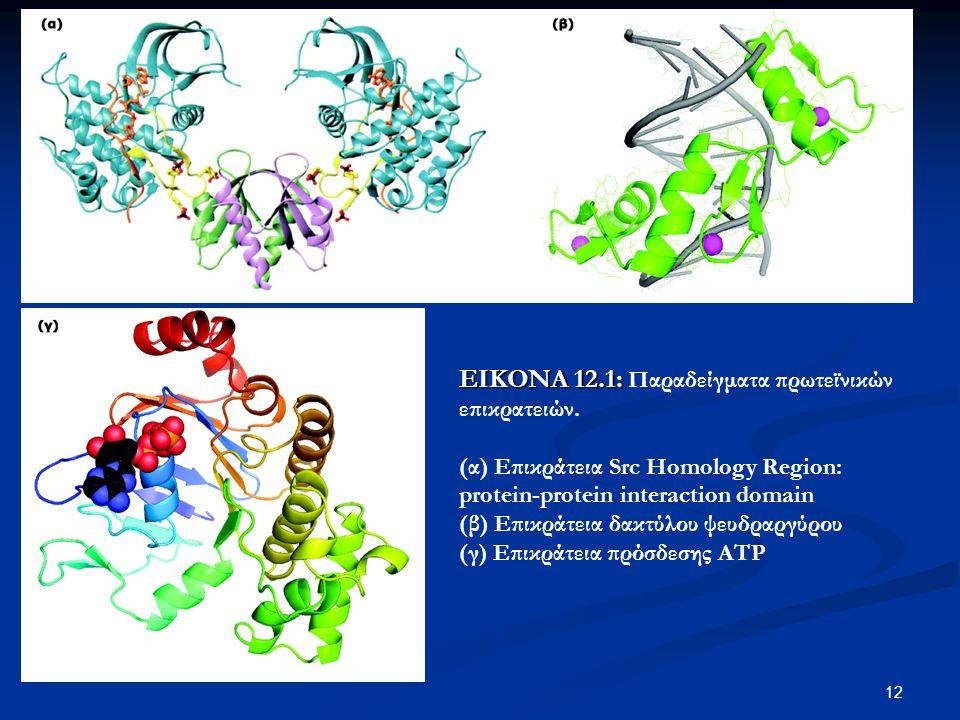 13 Ομολογία / ομοιότητα (homology vs similarity) Ομολογία / ομοιότητα (homology vs similarity) Ορθόλογα γονίδια Ορθόλογα γονίδια Παράλογα γονίδια Παράλογα γονίδια