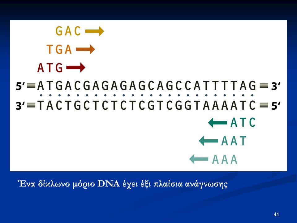 42 Η σάρωση ORFs είναι ένας αποτελεσματικός τρόπος για τον εντοπισμό γονιδίων σε ένα βακτηριακό γονιδίωμα