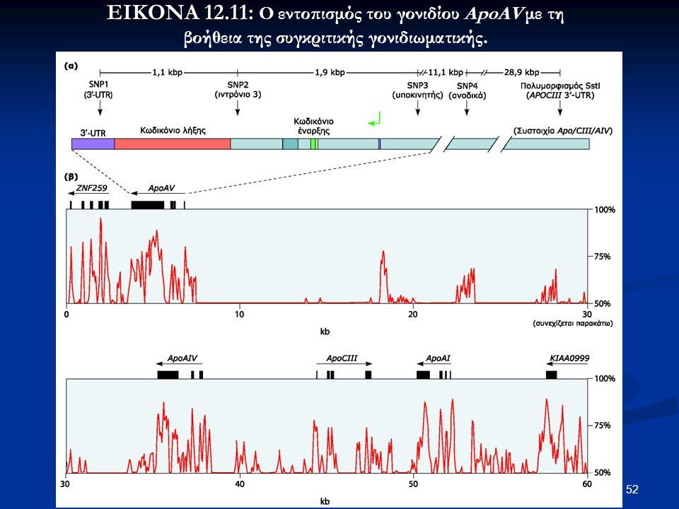 52 ΕΙΚΟΝΑ 12.11: ΕΙΚΟΝΑ 12.11: Ο εντοπισμός του γονιδίου ApoAV με τη βοήθεια της συγκριτικής γονιδιωματικής.