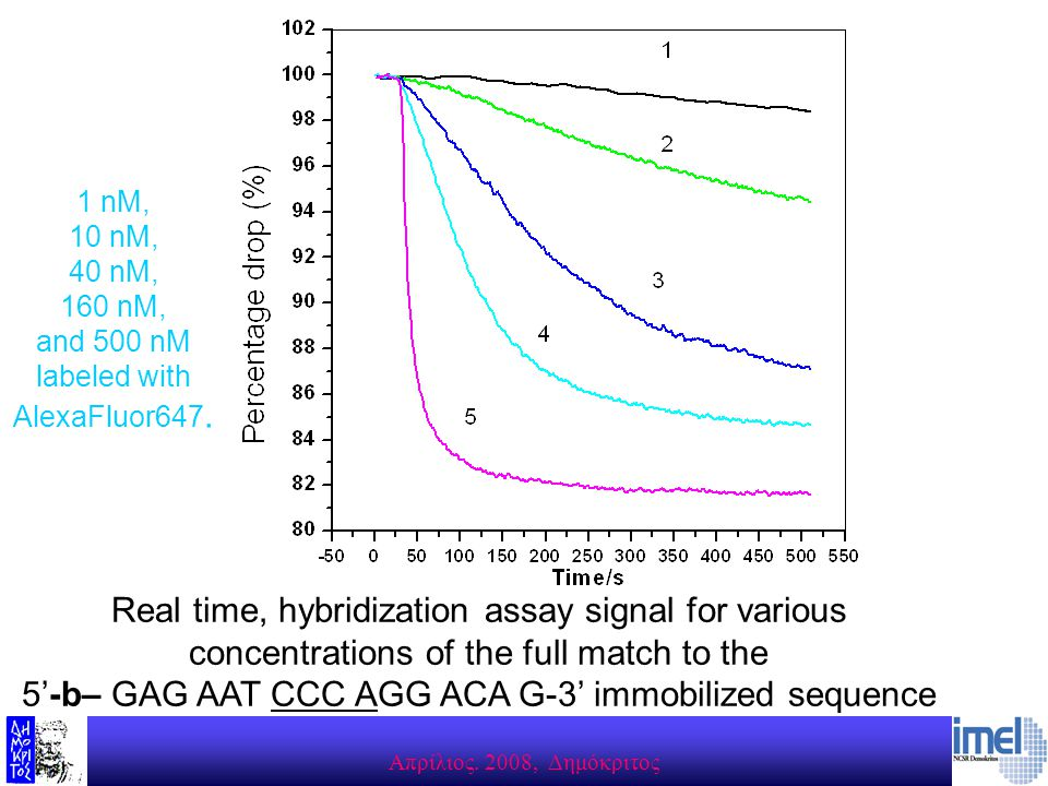 Aπρίλιος. 2008, Δημόκριτος Real time, hybridization assay signal for various concentrations of the full match to the 5'-b– GAG AAT CCC AGG ACA G-3' im