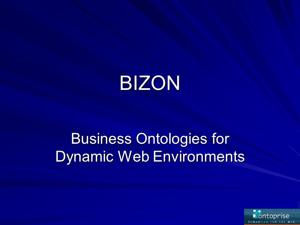 BIZON Business Ontologies for Dynamic Web Environments