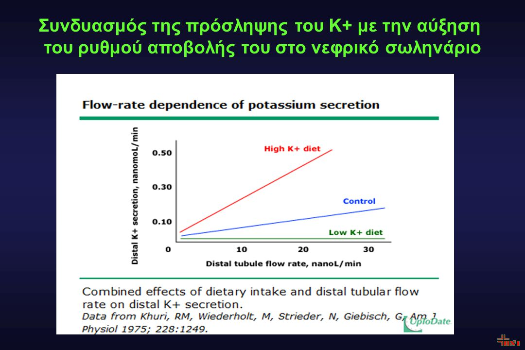 Συνδυασμός της πρόσληψης του Κ+ με την αύξηση του ρυθμού αποβολής του στο νεφρικό σωληνάριο