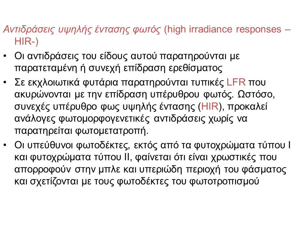 Αντιδράσεις υψηλής έντασης φωτός (high irradiance responses – HIR-) Οι αντιδράσεις του είδους αυτού παρατηρούνται με παρατεταμένη ή συνεχή επίδραση ερ