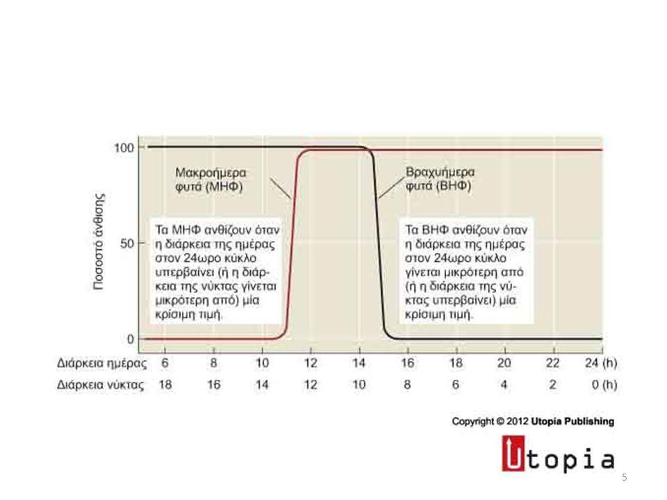 CO: transcriptional regulator