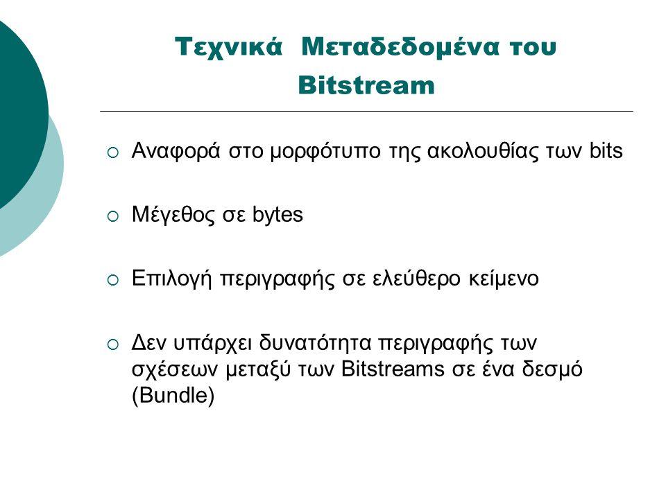 Πληροφορίες για τα μορφότυπα των Bitstream  Σύντομη ονομασία και πλήρης περιγραφή  Τύπου MIME  Πληροφορίες για αυτόματη αναγνώριση μορφοτύπου  Επίπεδα υποστήριξης: Υποστηρίζεται Αναγνωρίζεται Δεν υποστηρίζεται  Η αναπαράσταση πληροφοριών δεν διατίθεται τρεχόντως στο σύστημα