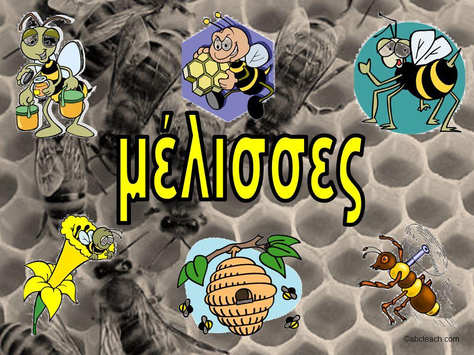 Όλες οι μέλισσες συνεργάζονται, και εργάζονται σκληρά για να φτιάξουν μέλι για τον εαυτό τους… και για μας!