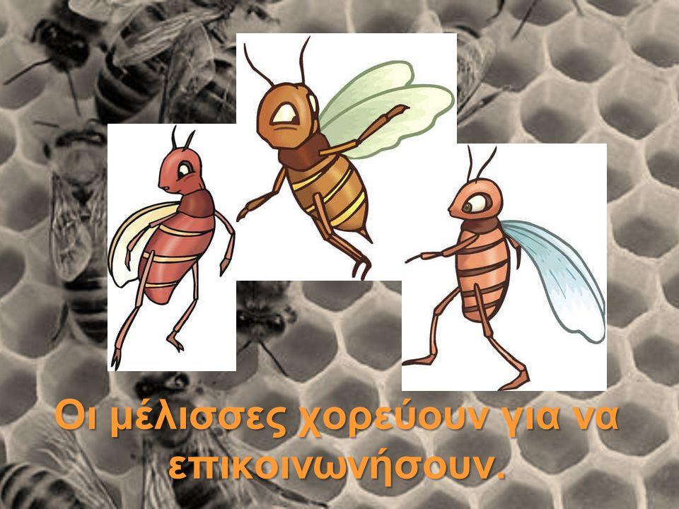 Οι μέλισσες χορεύουν για να επικοινωνήσουν.