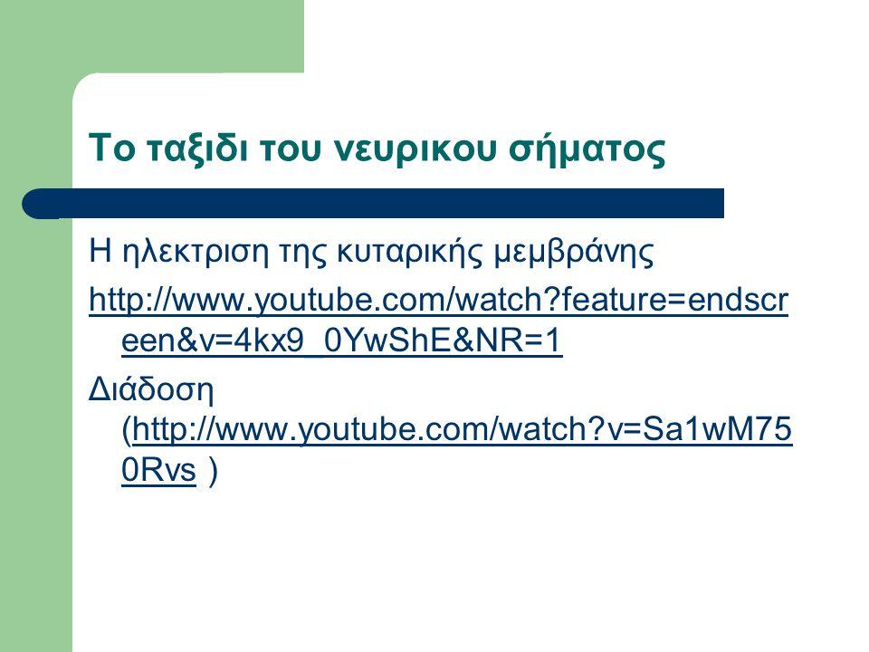 Το ταξιδι του νευρικου σήματος Η ηλεκτριση της κυταρικής μεμβράνης http://www.youtube.com/watch feature=endscr een&v=4kx9_0YwShE&NR=1 Διάδοση (http://www.youtube.com/watch v=Sa1wM75 0Rvs )http://www.youtube.com/watch v=Sa1wM75 0Rvs