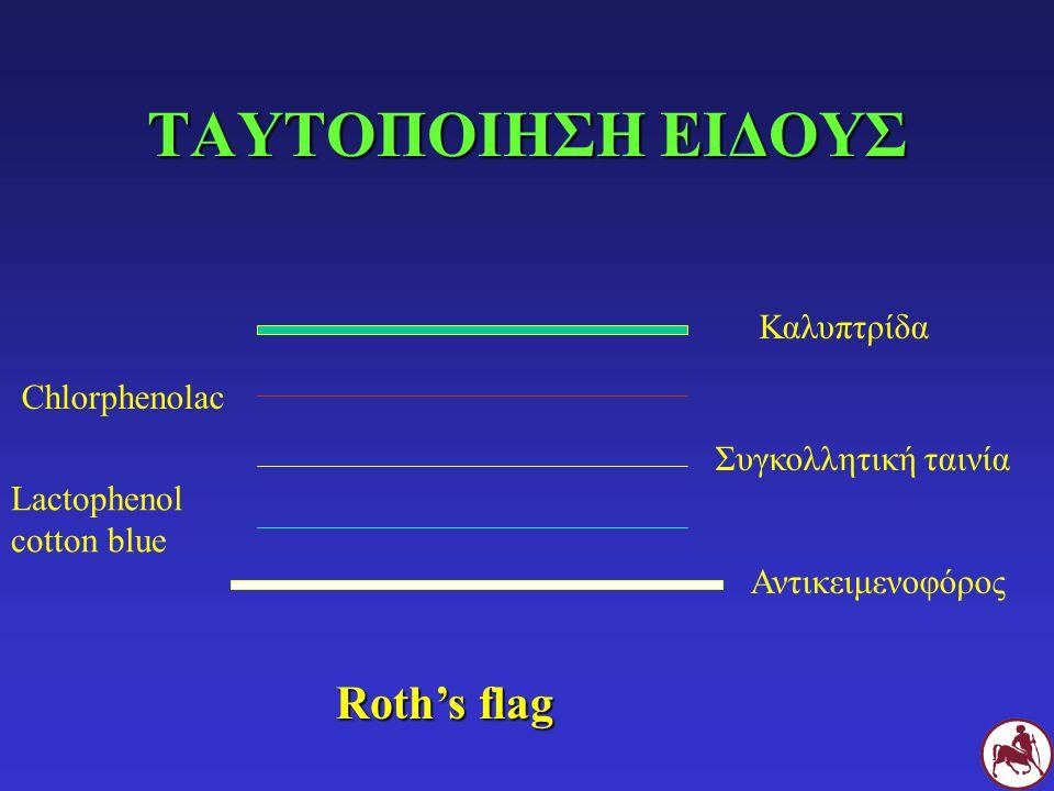 ΤΑΥΤΟΠΟΙΗΣΗ ΕΙΔΟΥΣ Αντικειμενοφόρος Lactophenol cotton blue Συγκολλητική ταινία Chlorphenolac Καλυπτρίδα Roth's flag
