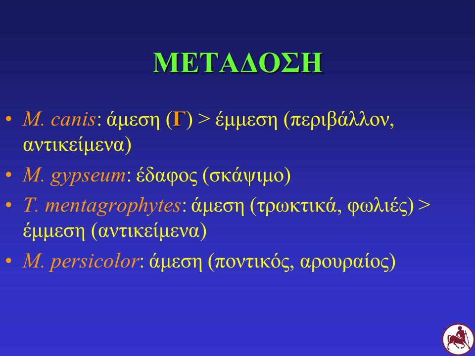 ΜΕΤΑΔΟΣΗ ΓM. canis: άμεση (Γ) > έμμεση (περιβάλλον, αντικείμενα) M. gypseum: έδαφος (σκάψιμο) T. mentagrophytes: άμεση (τρωκτικά, φωλιές) > έμμεση (αν