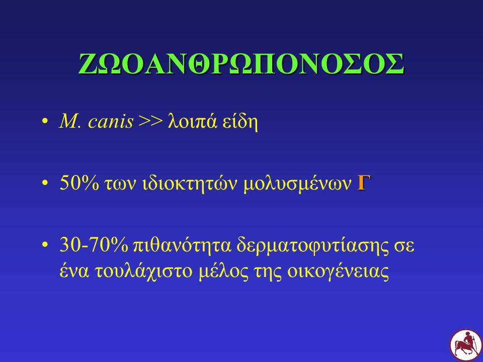 ΖΩΟΑΝΘΡΩΠΟΝΟΣΟΣ M. canis >> λοιπά είδη Γ50% των ιδιοκτητών μολυσμένων Γ 30-70% πιθανότητα δερματοφυτίασης σε ένα τουλάχιστο μέλος της οικογένειας