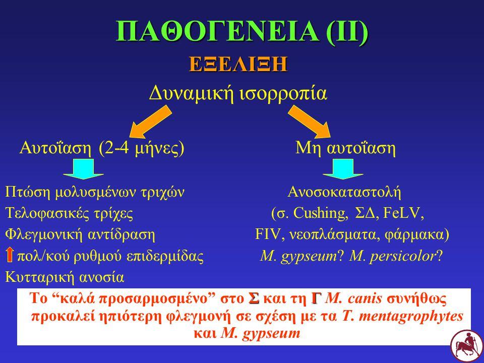 ΕΞΕΛΙΞΗ Δυναμική ισορροπία Αυτοΐαση (2-4 μήνες)Μη αυτοΐαση Πτώση μολυσμένων τριχών Ανοσοκαταστολή Τελοφασικές τρίχες (σ. Cushing, ΣΔ, FeLV, Φλεγμονική