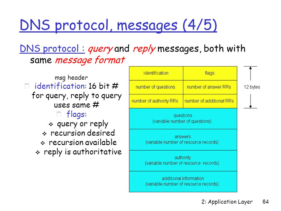 2: Application Layer 64 DNS protocol, messages (4/5) DNS protocol : query and reply messages, both with same message format msg header ridentification: 16 bit # for query, reply to query uses same # rflags:  query or reply  recursion desired  recursion available  reply is authoritative