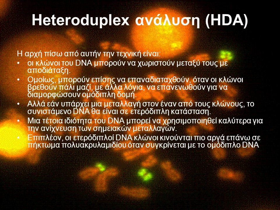 Heteroduplex ανάλυση (HDA) Η αρχή πίσω από αυτήν την τεχνική είναι: οι κλώνοι του DNA μπορούν να χωριστούν μεταξύ τους με αποδιάταξη. Ομοίως, μπορούν