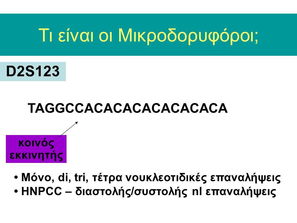 Τι είναι οι Μικροδορυφόροι; D2S123 TAGGCCACACACACACACACA κοινός εκκινητής Mόνo, di, tri, τέτρα νουκλεοτιδικές επαναλήψεις HNPCC – διαστολής/συστολής nl επαναλήψεις