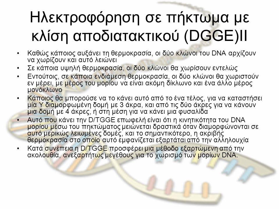 Ηλεκτροφόρηση σε πήκτωμα με κλίση αποδιατακτικού (DGGE)ΙΙ Καθώς κάποιος αυξάνει τη θερμοκρασία, οι δύο κλώνοι του DNA αρχίζουν να χωρίζουν και αυτό λε
