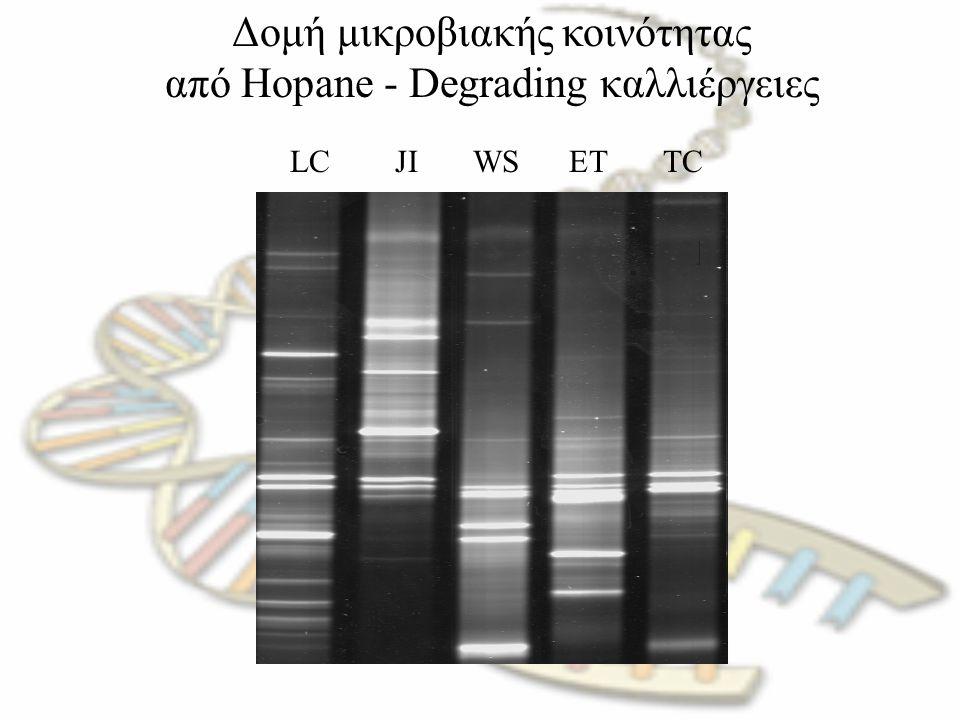 Δομή μικροβιακής κοινότητας από Hopane - Degrading καλλιέργειες LC JI WS ET TC