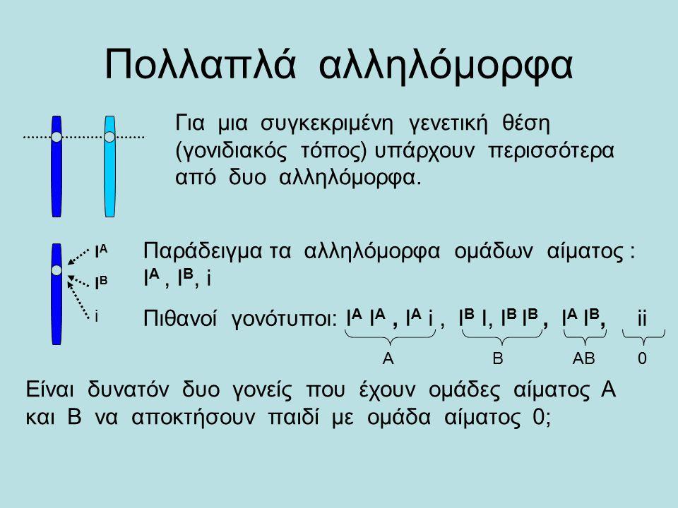 Πολλαπλά αλληλόμορφα Για μια συγκεκριμένη γενετική θέση (γονιδιακός τόπος) υπάρχουν περισσότερα από δυο αλληλόμορφα.