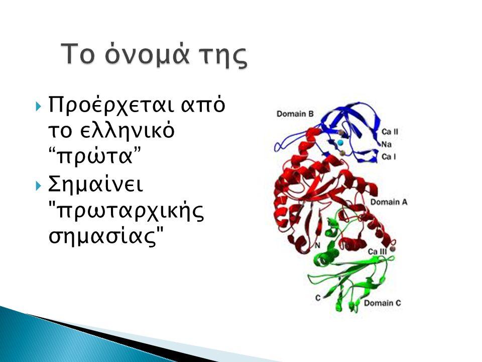  Προέρχεται από το ελληνικό πρώτα  Σημαίνει πρωταρχικής σημασίας