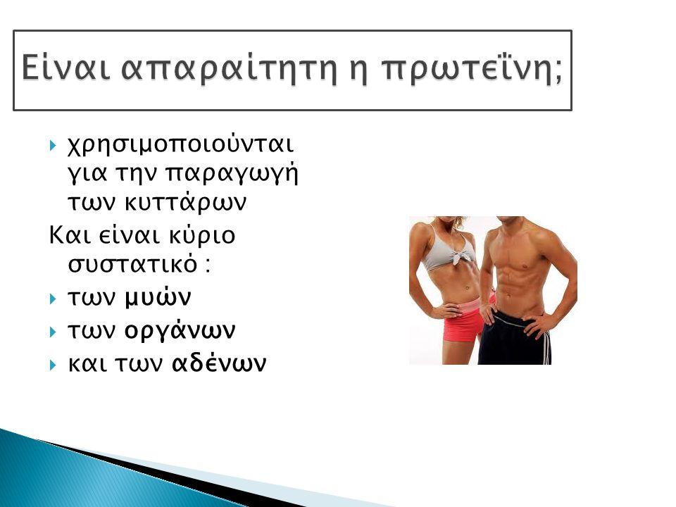  χρησιμοποιούνται για την παραγωγή των κυττάρων Και είναι κύριο συστατικό :  των μυών  των οργάνων  και των αδένων