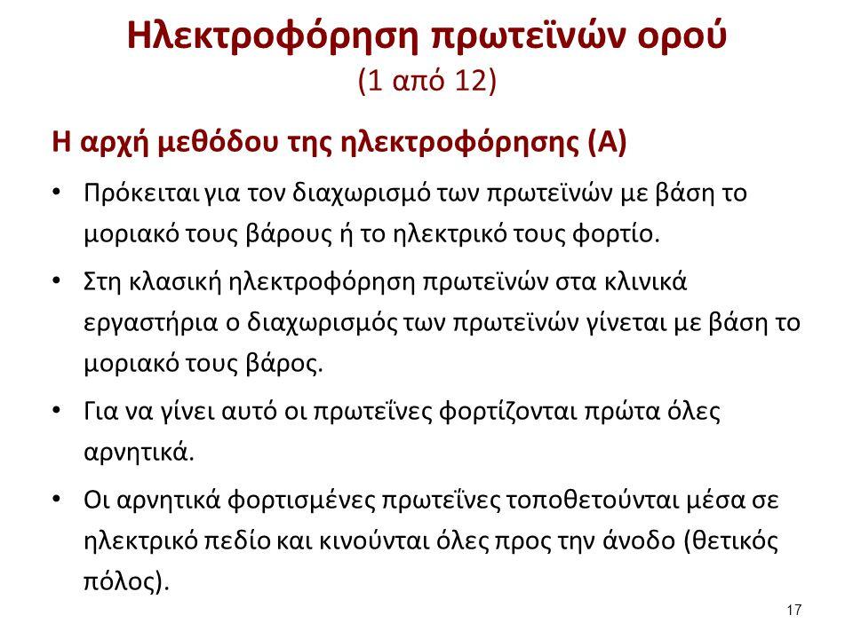 Ηλεκτροφόρηση πρωτεϊνών ορού (1 από 12) Η αρχή μεθόδου της ηλεκτροφόρησης (Α) Πρόκειται για τον διαχωρισμό των πρωτεϊνών με βάση το μοριακό τους βάρου
