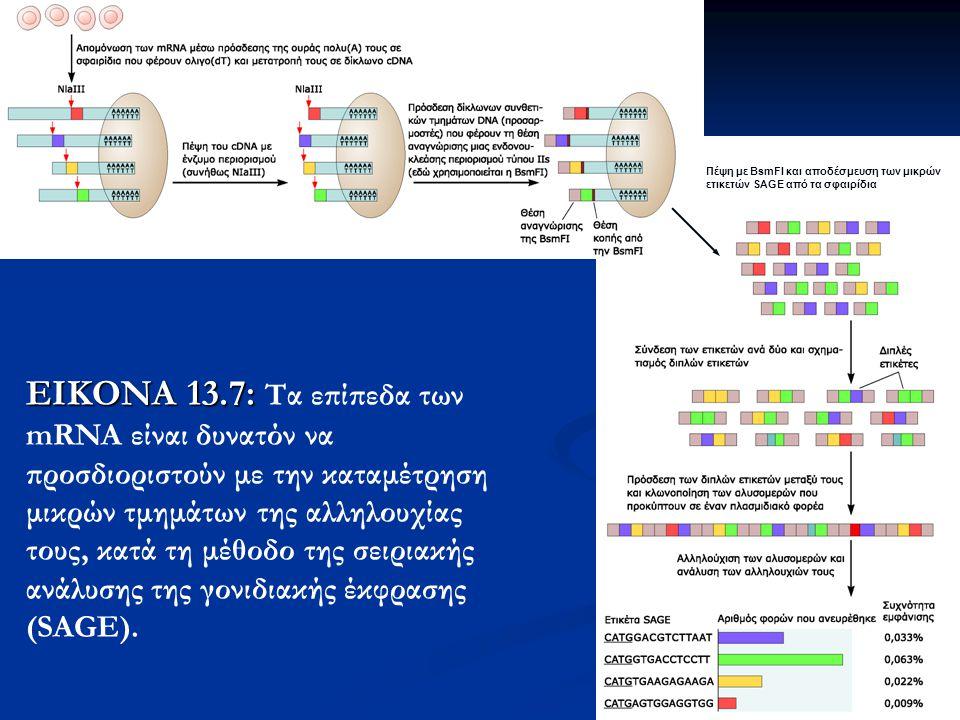 31 ΕΙΚΟΝΑ 13.7: ΕΙΚΟΝΑ 13.7: Tα επίπεδα των mRNA είναι δυνατόν να προσδιοριστούν με την καταμέτρηση μικρών τμημάτων της αλληλουχίας τους, κατά τη μέθοδο της σειριακής ανάλυσης της γονιδιακής έκφρασης (SAGE).
