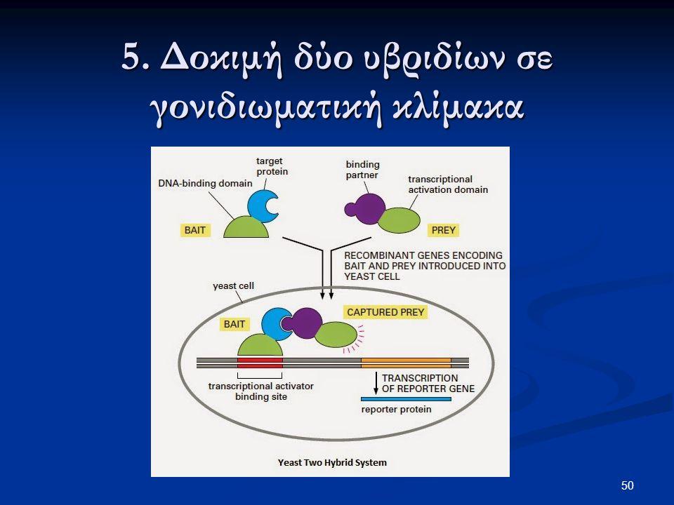 50 5. Δοκιμή δύο υβριδίων σε γονιδιωματική κλίμακα