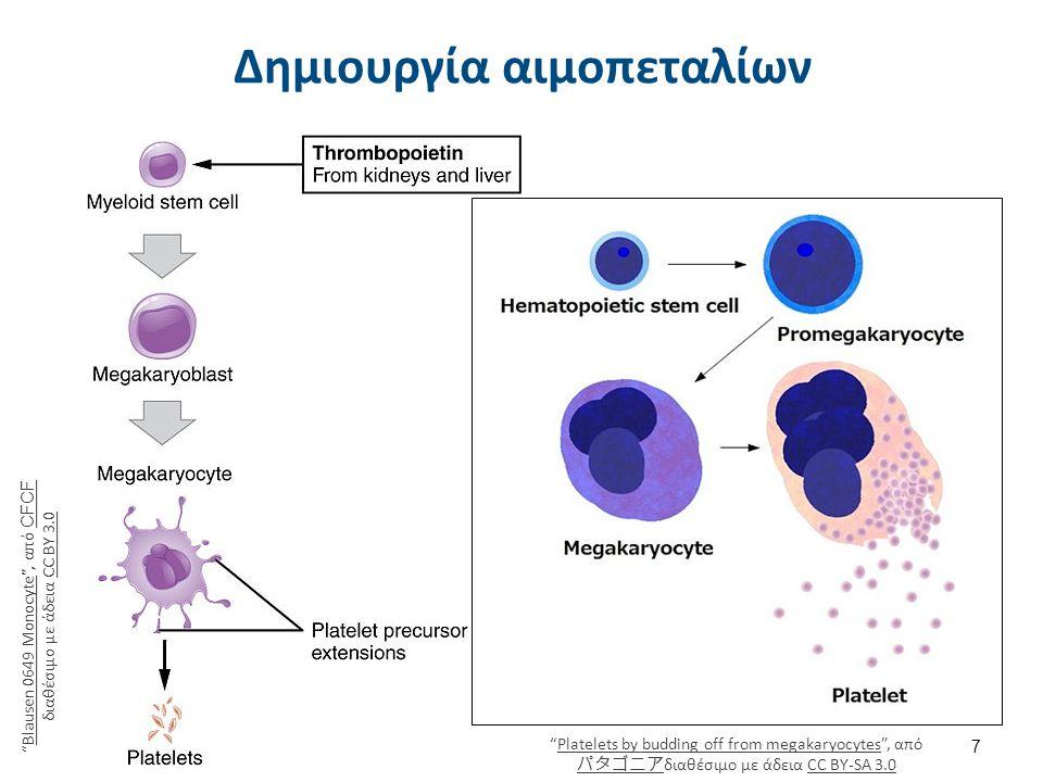 """Δημιουργία αιμοπεταλίων 7 """"Blausen 0649 Monocyte"""", από CFCF διαθέσιμο με άδεια CC BY 3.0Blausen 0649 Monocyte CFCFCC BY 3.0 """"Platelets by budding off"""