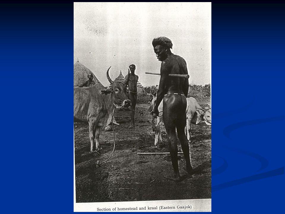 Εμφύλιος στο Σουδάν 1983-1990 Συμμαχία Νούερ – Ντίνκα 1983-1990 Συμμαχία Νούερ – Ντίνκα 1990 διάσπαση ΛΑΣΣ 1990 διάσπαση ΛΑΣΣ Κατάρρευση παραδοσιακών αξιών Κατάρρευση παραδοσιακών αξιών Εθνοτικός εμφύλιος μεταξύ Νούερ και Ντίνκα Εθνοτικός εμφύλιος μεταξύ Νούερ και Ντίνκα Παράγοντες αλλαγής Παράγοντες αλλαγής Νέου τύπου αρχηγών Νέου τύπου αρχηγών Διάδοση όπλων Διάδοση όπλων Ανεύρεση πετρελαίου Ανεύρεση πετρελαίου