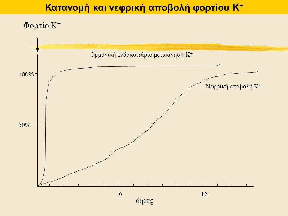 6 12 100% Φορτίο Κ + 50% ώρες Ορμονική ενδοκυττάρια μετακίνηση Κ + Νεφρική αποβολή Κ + Κατανομή και νεφρική αποβολή φορτίου Κ +