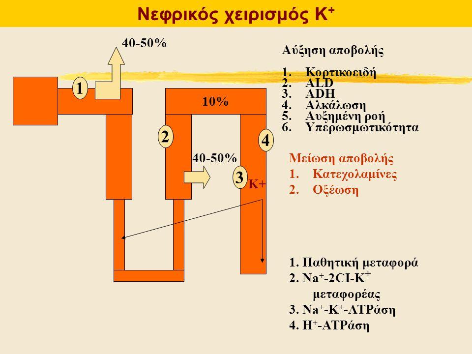 Νεφρικός χειρισμός Κ + 10% 40-50% Αύξηση αποβολής 1.Κορτικοειδή 2.ALD 3.ADH 4.Αλκάλωση 5.Αυξημένη ροή 6.Υπερωσμωτικότητα Μείωση αποβολής 1.Κατεχολαμίν