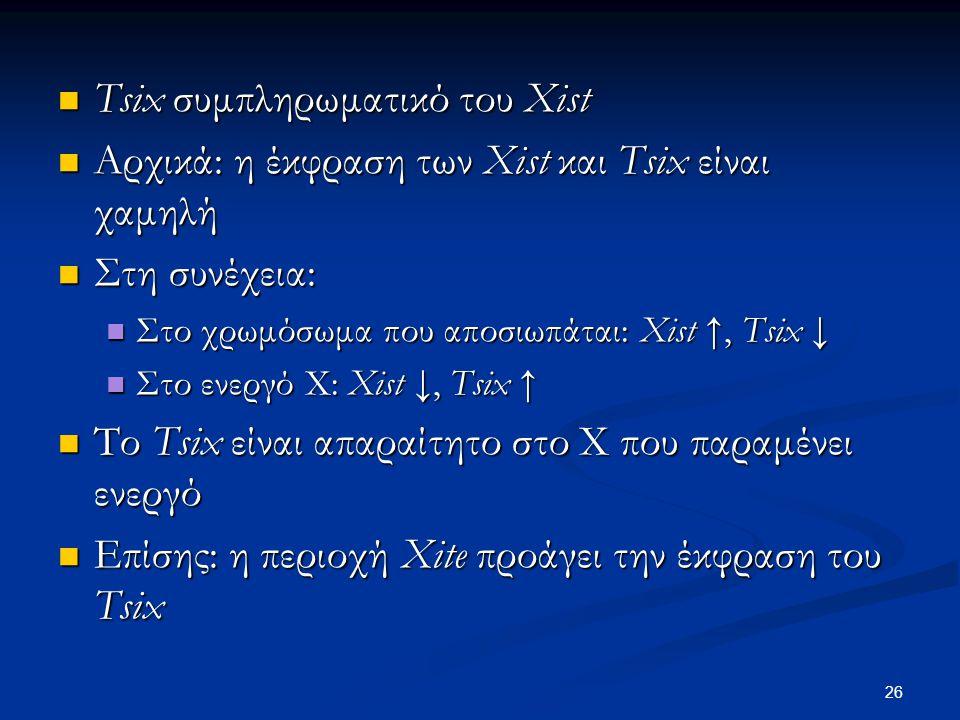 Tsix συμπληρωματικό του Xist Tsix συμπληρωματικό του Xist Αρχικά: η έκφραση των Xist και Tsix είναι χαμηλή Αρχικά: η έκφραση των Xist και Tsix είναι χ