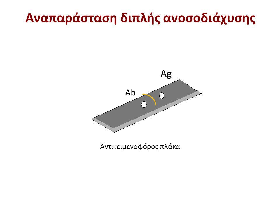 Αντίδραση ταυτότητας Το αντίσωμα είναι ειδικό έναντι του αντιγόνου Α και Β Διπλή ανοσοδιάχυση ΙΙ για σύγκριση χημικής συγγένειας μεταξύ δύο Ag και ενός Ab (1)