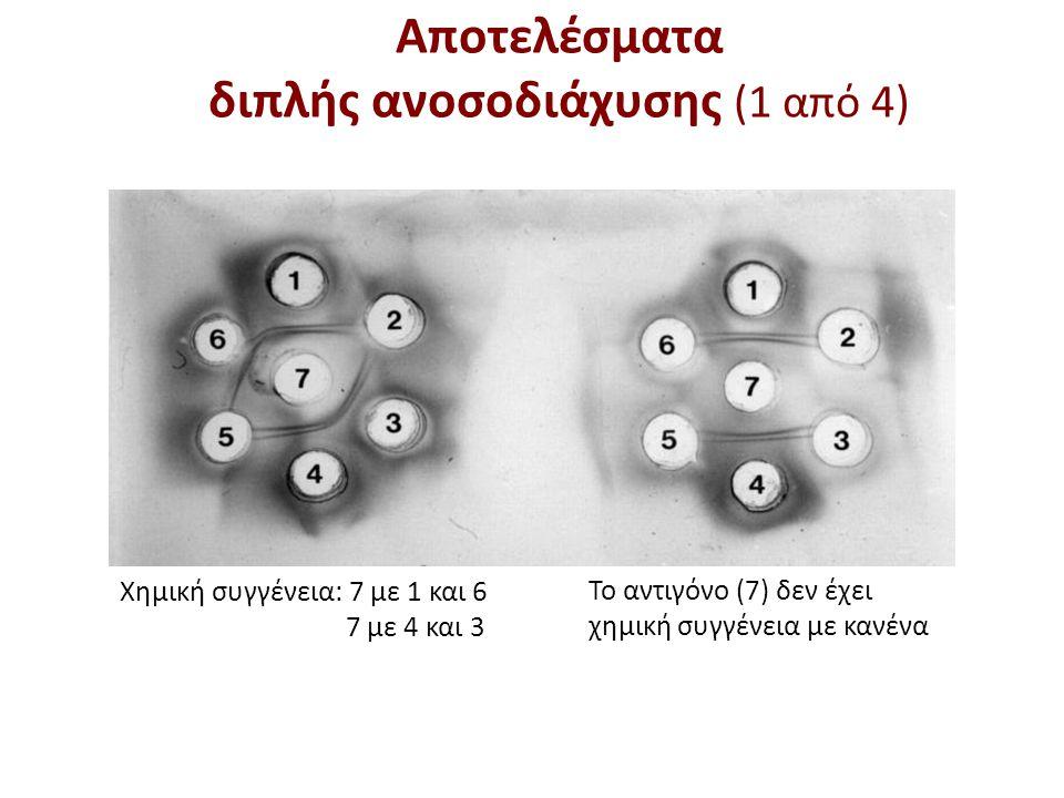 Το Ag αντιδρά με τα αντισώματα 1, 2 και 3 (αντίδραση ταυτότητας) Υπάρχει διπλή ζώνη ιζηματίνης λόγω διπλού επιτόπου.