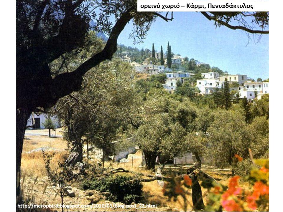 ορεινό χωριό – Κάρμι, Πενταδάκτυλος http://meropbird.blogspot.com/2010/01/blog-post_22.html