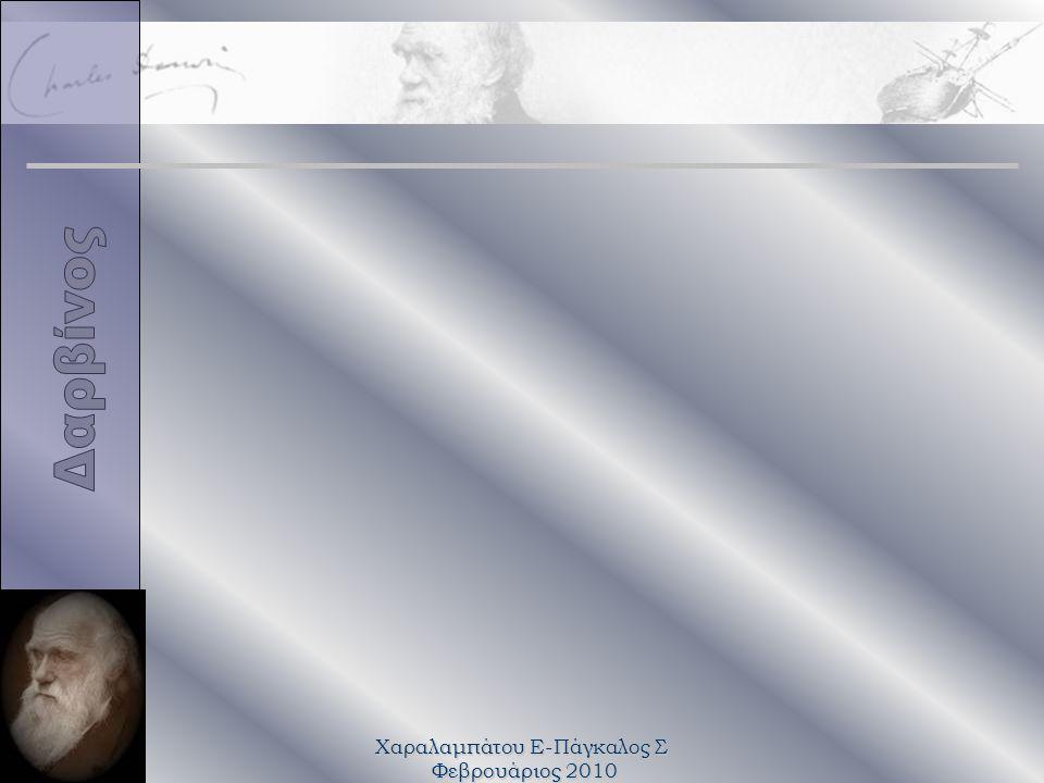 Χαραλαμπάτου Ε-Πάγκαλος Σ Φεβρουάριος 2010 Κάρολος Δαρβίνος 150 +1 χρόνια από τη δημοσίευση της «Καταγωγής των ειδών» 200+1 χρόνια από τη γέννησή του