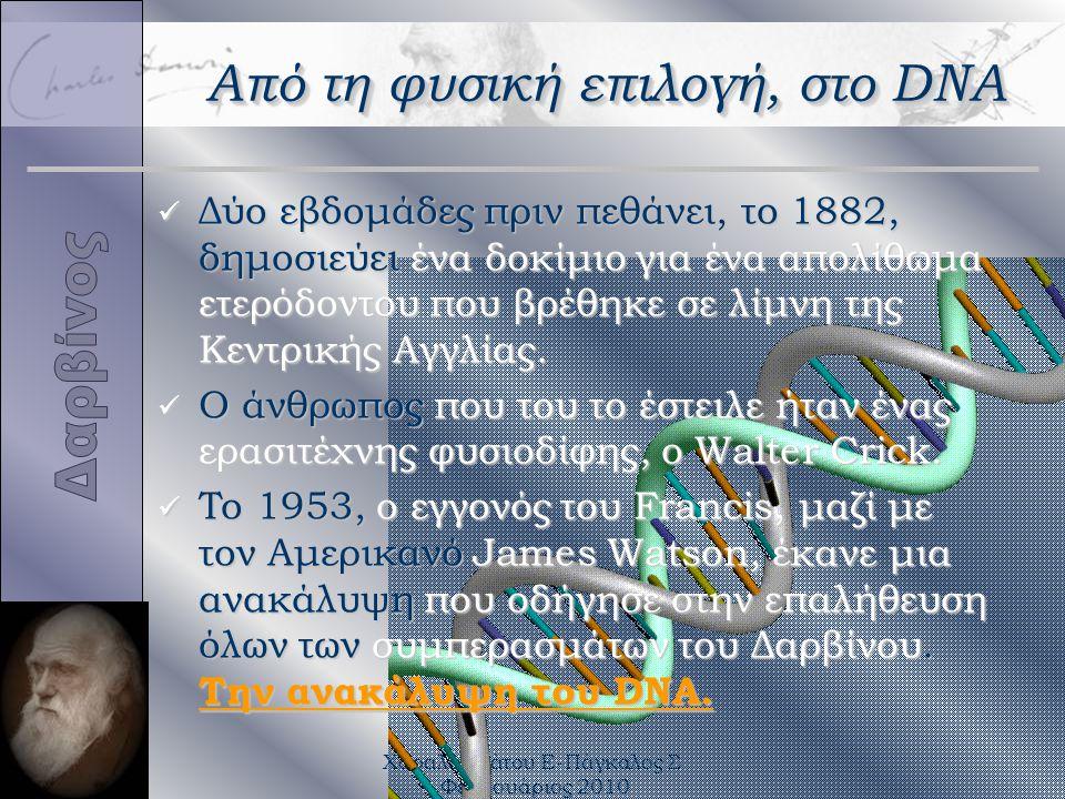 Χαραλαμπάτου Ε-Πάγκαλος Σ Φεβρουάριος 2010 Από τη φυσική επιλογή, στο DNA ü Δύο εβδομάδες πριν πεθάνει, το 1882, δημοσιεύει ένα δοκίμιο για ένα απολίθ