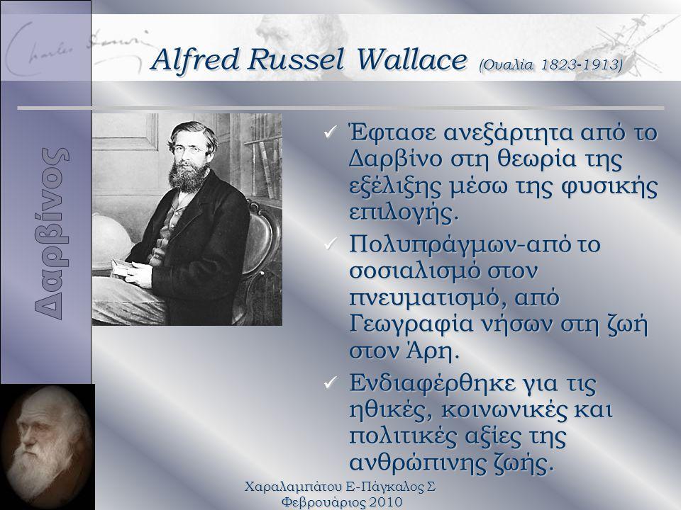 Χαραλαμπάτου Ε-Πάγκαλος Σ Φεβρουάριος 2010 (Ουαλία 1823-1913) Alfred Russel Wallace (Ουαλία 1823-1913) ü Έφτασε ανεξάρτητα από το Δαρβίνο στη θεωρία της εξέλιξης μέσω της φυσικής επιλογής.