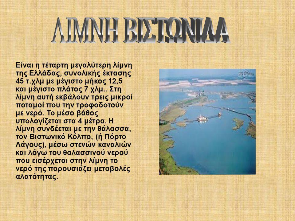 Είναι η τέταρτη μεγαλύτερη λίμνη της Ελλάδας, συνολικής έκτασης 45 τ.χλμ με μέγιστο μήκος 12,5 και μέγιστο πλάτος 7 χλμ..