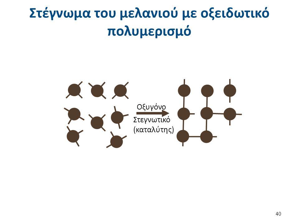 Στέγνωμα του μελανιού με οξειδωτικό πολυμερισμό Οξυγόνο Στεγνωτικό (καταλύτης) 40