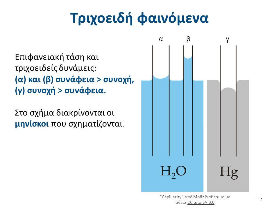 Τριχοειδή φαινόμενα Επιφανειακή τάση και τριχοειδείς δυνάμεις: (α) και (β) συνάφεια > συνοχή, (γ) συνοχή > συνάφεια. Στο σχήμα διακρίνονται οι μηνίσκο