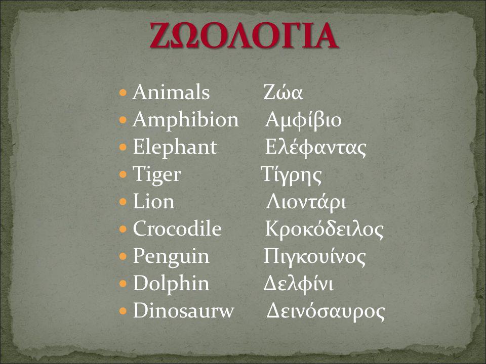 Animals Ζώα Amphibion Αμφίβιο Elephant Ελέφαντας Tiger Τίγρης Lion Λιοντάρι Crocodile Κροκόδειλος Penguin Πιγκουίνος Dolphin Δελφίνι Dinosaurw Δεινόσα