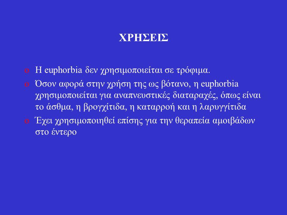 ΧΡΗΣΕΙΣ oΗ euphorbia δεν χρησιμοποιείται σε τρόφιμα.