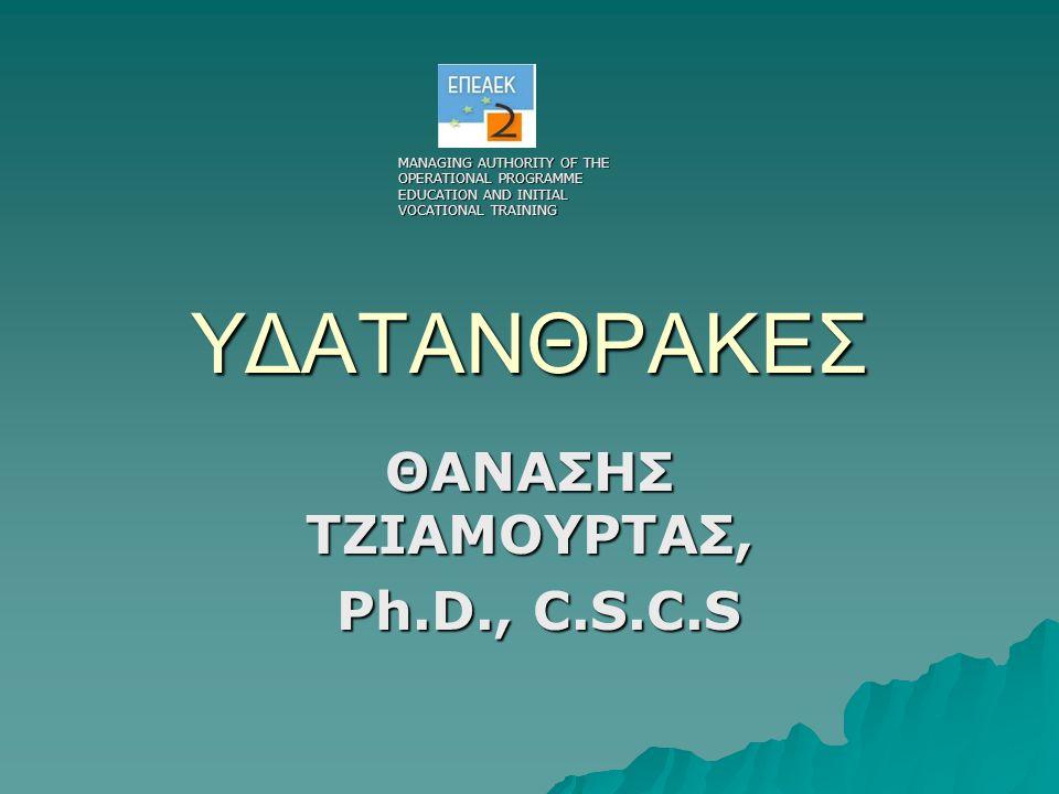 ΥΔΑΤΑΝΘΡΑΚΕΣ ΘΑΝΑΣΗΣ ΤΖΙΑΜΟΥΡΤΑΣ, Ph.D., C.S.C.S Ph.D., C.S.C.S MANAGING AUTHORITY OF THE OPERATIONAL PROGRAMME EDUCATION AND INITIAL VOCATIONAL TRAIN