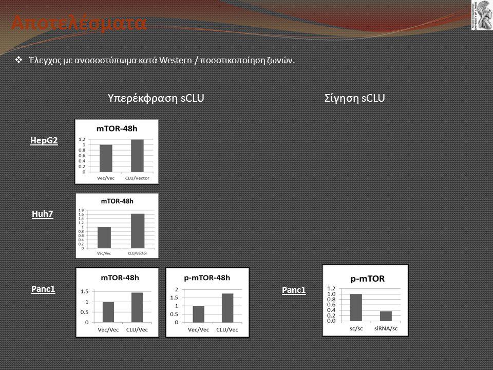 Αποτελέσματα  Έλεγχος με ανοσοστύπωμα κατά Western / ποσοτικοποίηση ζωνών.