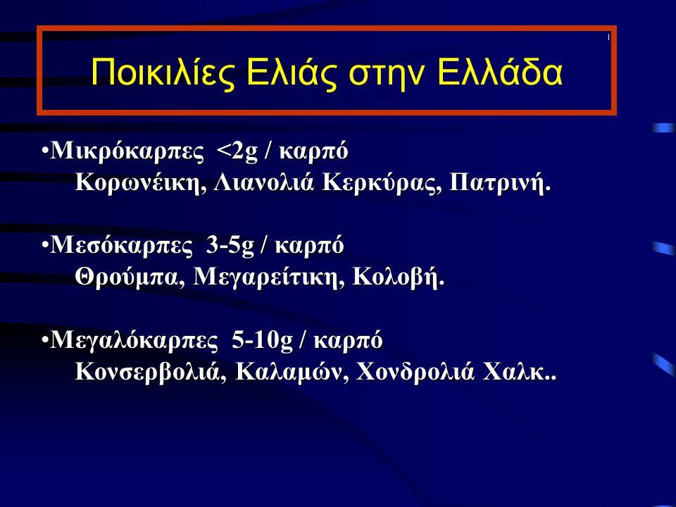 Ποικιλίες Ελιάς στην Ελλάδα Μικρόκαρπες <2g / καρπόΜικρόκαρπες <2g / καρπό Κορωνέικη, Λιανολιά Κερκύρας, Πατρινή. Μεσόκαρπες 3-5g / καρπόΜεσόκαρπες 3-