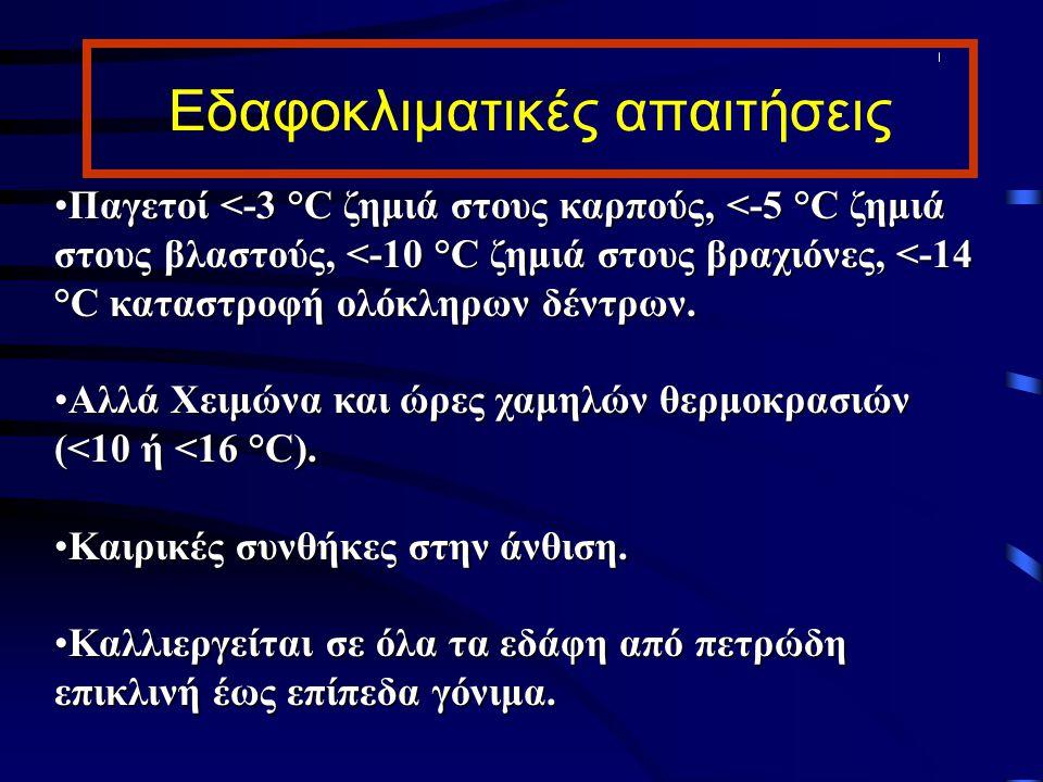 Εδαφοκλιματικές απαιτήσεις Παγετοί <-3 °C ζημιά στους καρπούς, <-5 °C ζημιά στους βλαστούς, <-10 °C ζημιά στους βραχιόνες, <-14 °C καταστροφή ολόκληρω