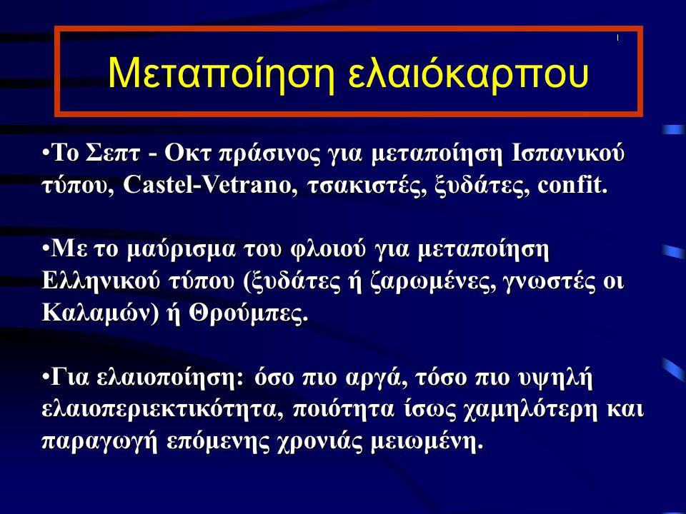 Μεταποίηση ελαιόκαρπου Το Σεπτ - Οκτ πράσινος για μεταποίηση Ισπανικού τύπου, Castel-Vetrano, τσακιστές, ξυδάτες, confit.Το Σεπτ - Οκτ πράσινος για με