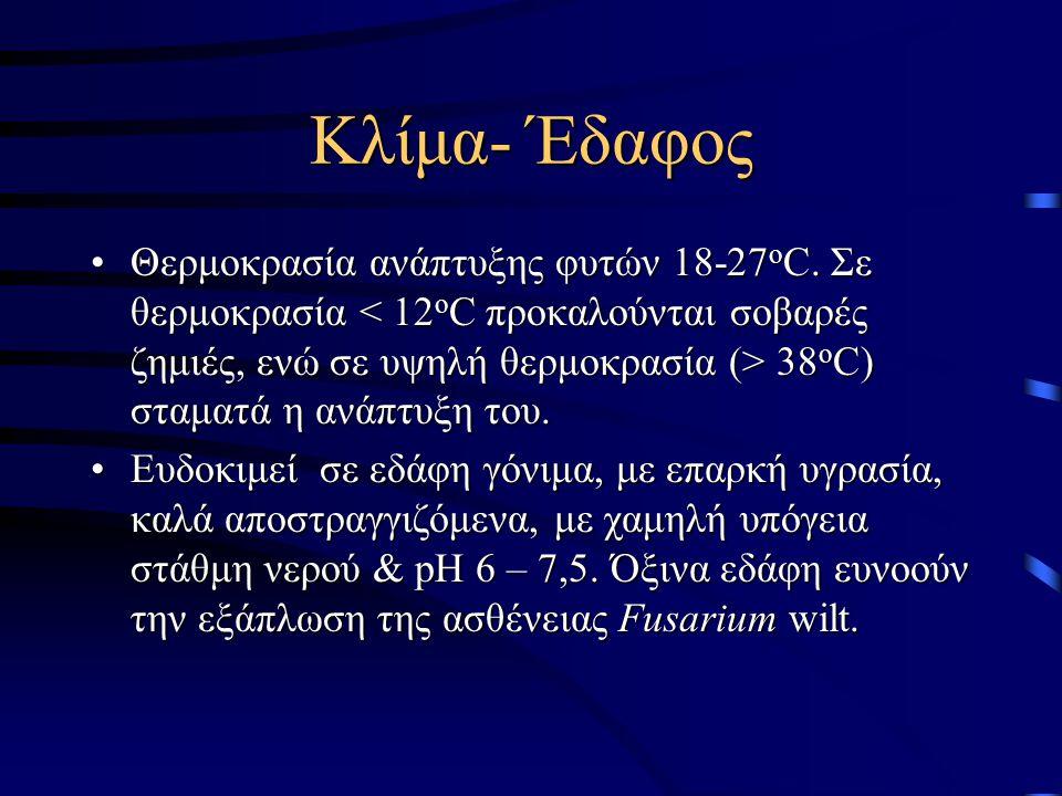 Κλίμα- Έδαφος Θερμοκρασία ανάπτυξης φυτών 18-27 ο C. Σε θερμοκρασία 38 ο C) σταματά η ανάπτυξη του.Θερμοκρασία ανάπτυξης φυτών 18-27 ο C. Σε θερμοκρασ